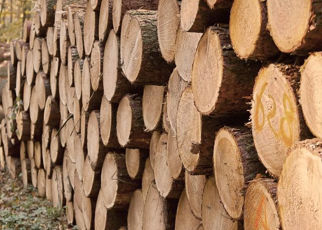 wood-trunks-1032461_640